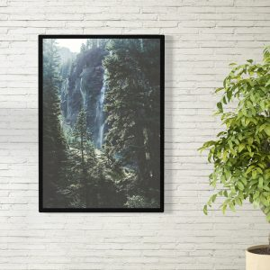 A Forest poster