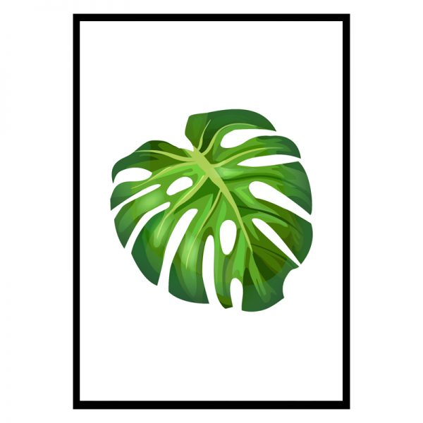 Big-leaf-01
