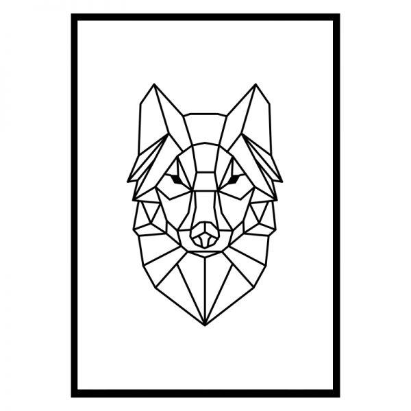 Fox-lines-01