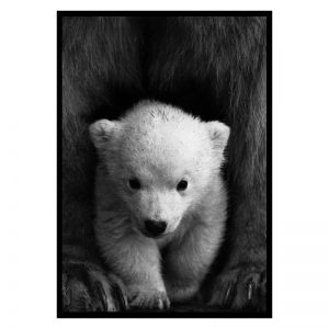 Little Polar Bear poster
