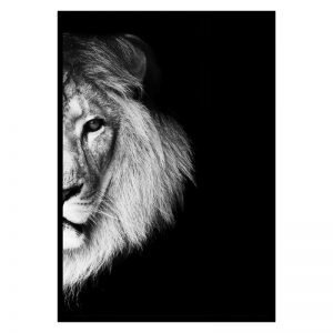 Half Lion poster