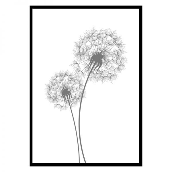 dandelion-01
