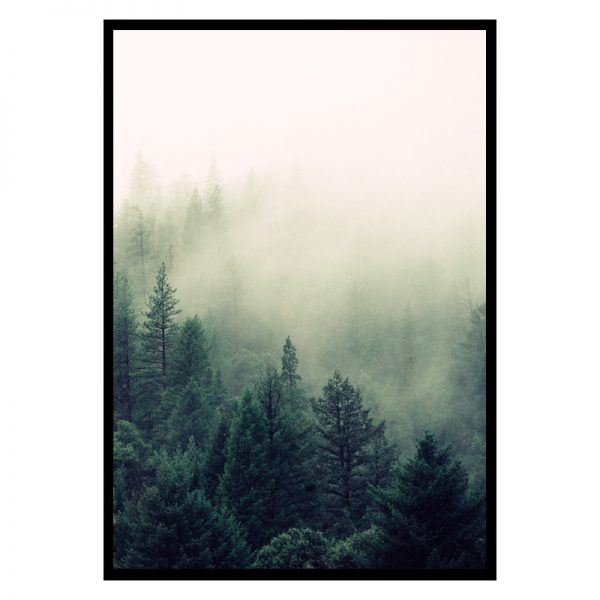 trees-in-nature-01