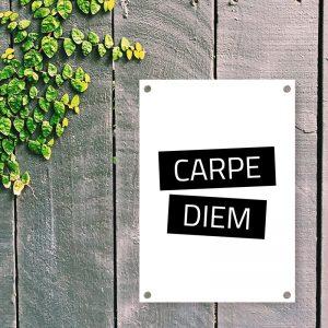 Carpe Diem tuinposter
