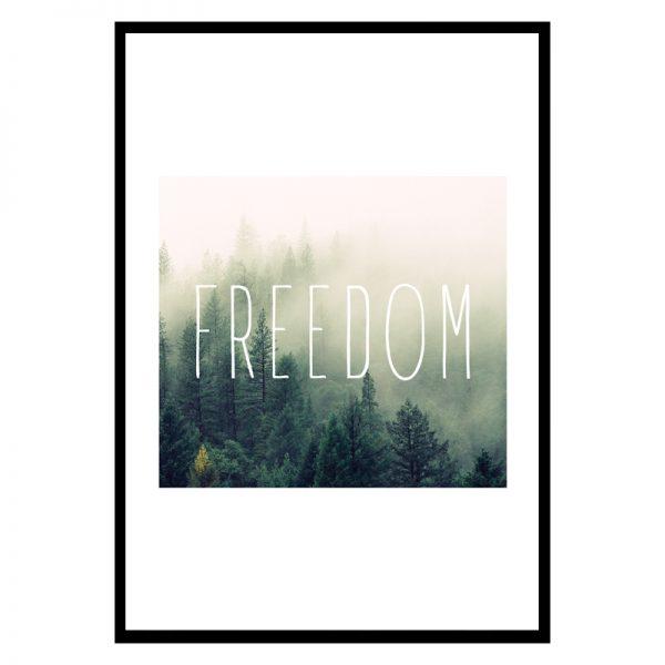freedom_01