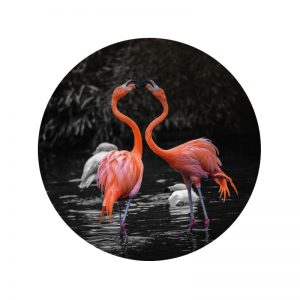 Behangcirkel - Bloemen Flamingo