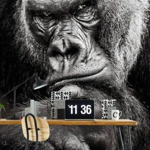 Behang - Gorilla