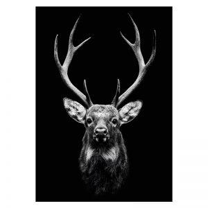 Aluminium Dibond Plexiglas Dark Deer dieren poster