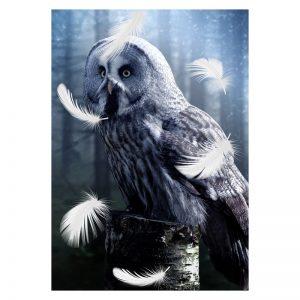 Aluminium Dibond Plexiglas White Owl dieren poster