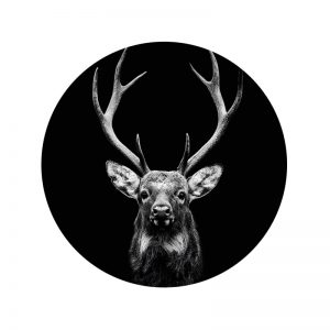 Behangcirkel - Dark Deer