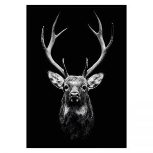 Dark Deer dieren poster