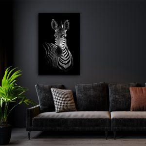 Dark Zebra dieren poster