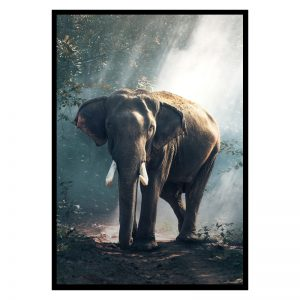 Elephant Forest dieren poster