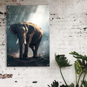 Elephant Forest dieren poster