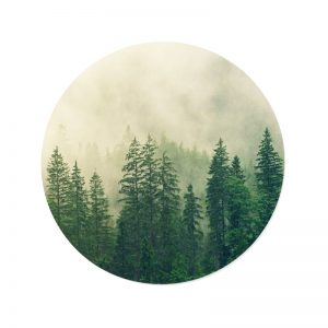 Behangcirkel - Bomen