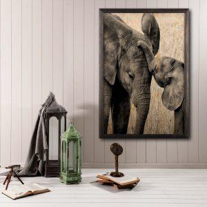Houten poster - Elephant
