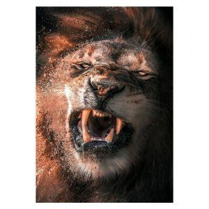 Aluminium Dibond Plexiglas Fighting Lion botanische jungle dieren poster