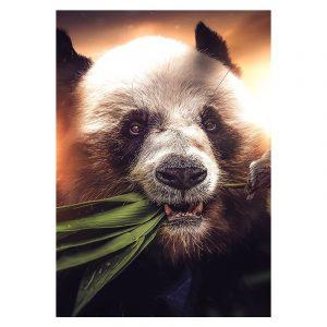 Aluminium Dibond Plexiglas Hungry Panda botanische jungle dieren poster