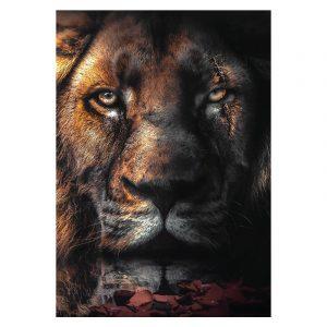 Aluminium Dibond Plexiglas Scar Lion botanische jungle dieren poster
