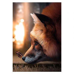 Aluminium Dibond Plexiglas Sweet Fox botanische jungle dieren poster