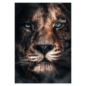 Aluminium Dibond Plexiglas Tiger botanische jungle dieren poster