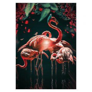 Aluminium Dibond Plexiglas Water Flamingo botanische jungle dieren poster