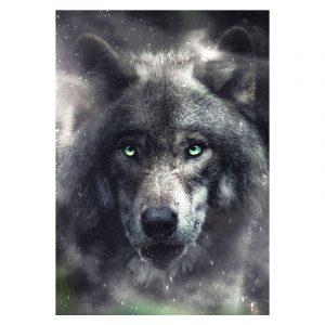 Aluminium Dibond Plexiglas Wolf botanische jungle dieren poster