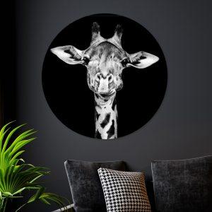 Aluminium Cirkel - Dark Giraffe