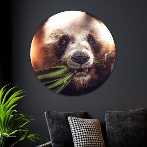 Aluminium Cirkel - Hungry Panda