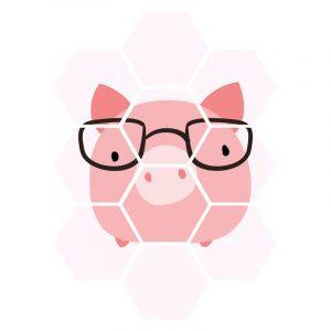 Hexagon - Pink Pig kindercollage