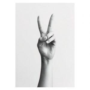 Aluminium Dibond Plexiglas Peace poster