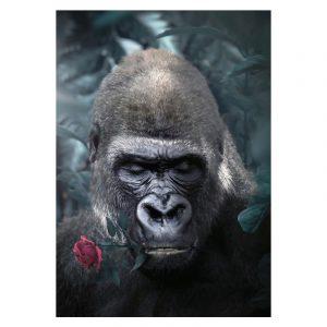 Aluminium Dibond Plexiglas Rose Gorilla botanische jungle dieren poster