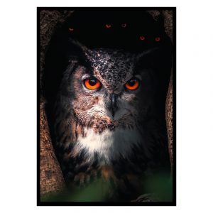 Spooky Owl poster botanisch jungle dieren